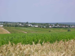 Оценка участков сельскохозяйственного назначения